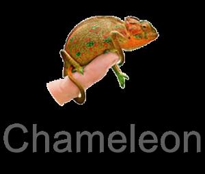 Chameleon VPN